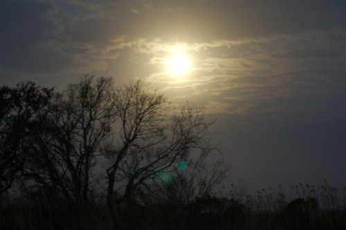 moonset3.jpg