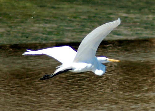 greategret.jpg