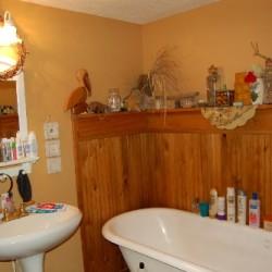 mybathroom1