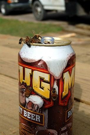 Bees take 10
