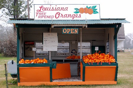 orangestand.jpg