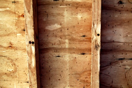 Bee holes