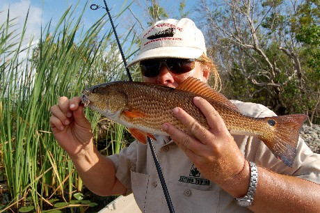 Another redfish