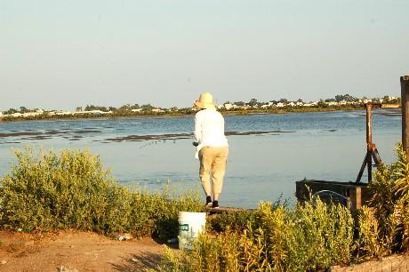 BB marsh fishing