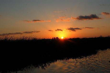 mauvais.sunset