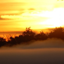 foggy-sunrise-006