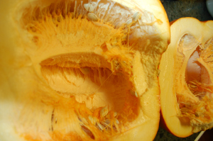 Pumpkin.Pie Innards