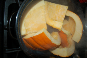 Raw Pumpkin in the roasting pan