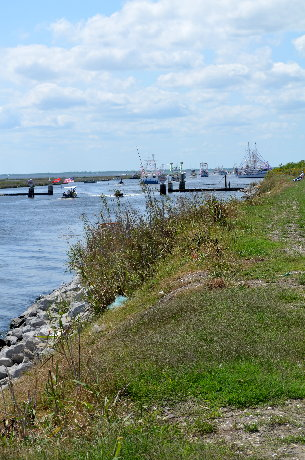 Boats lined up at mouth of Lake Boudreaux