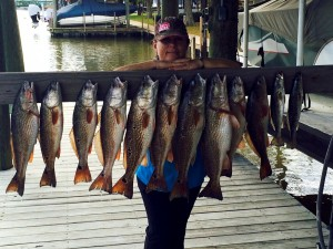 January Redfish