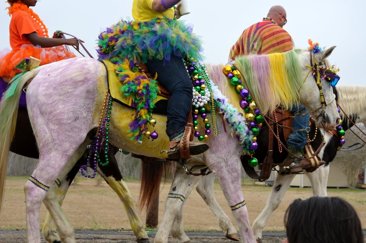 Purple horse!!!