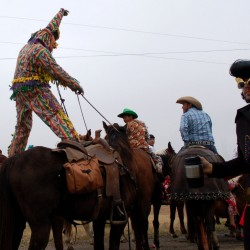 runner-standing-on-horse