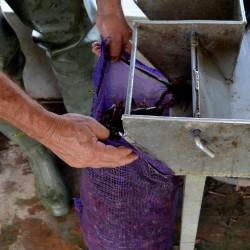 crawfish-sack-table