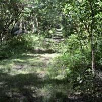 Centerville Trail