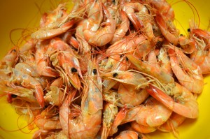 boiled.shrimp