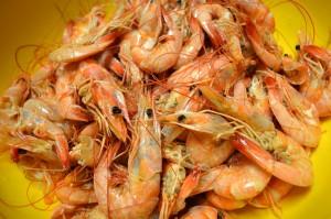 boiled.shrimp