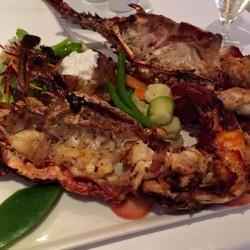 rock-lobster-merlot
