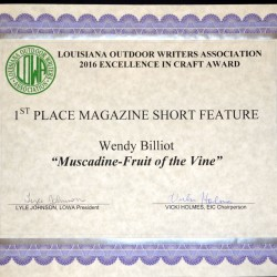 1st-Mag-Short-Muscadines