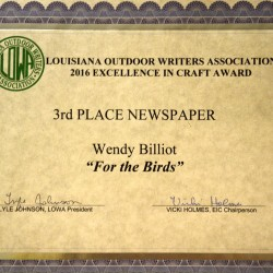 3rd-Newspaper-For-the-Birds