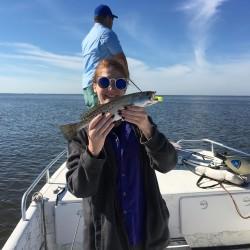 Britt-trout