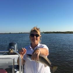 me-trout